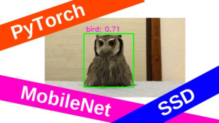 PytorchでMobileNet SSDによるリアルタイム物体検出