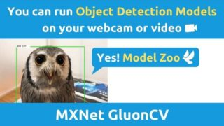MXnetとGluonで物体検出ソフトを作る