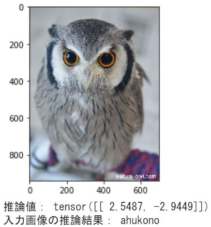フクロウ分類器の推論結果