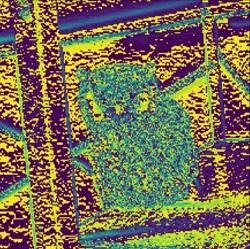 Pytorchで画像処理